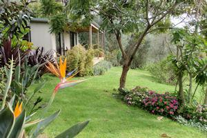 Wharepuke Subtropical Cottages