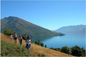 Eco Wanaka Adventures - Lake Cruises